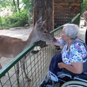 Obisk zoo dom upokojencev Vrhnika