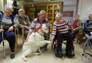 Terapija z živalmi dom za upokojence Vrhnika